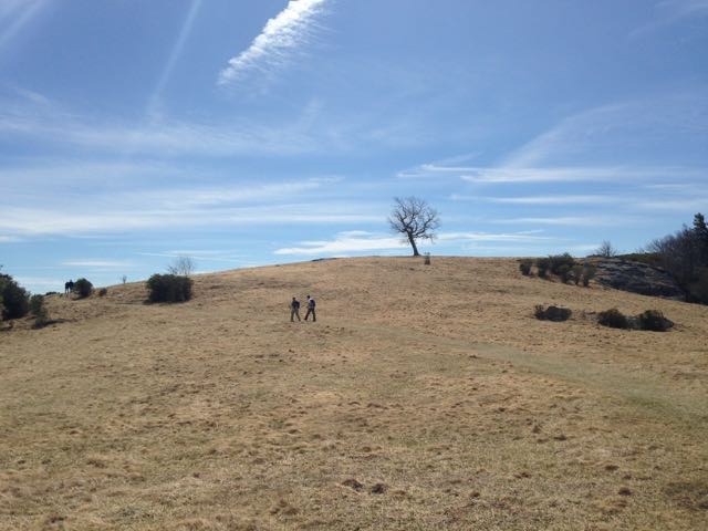 Mountain meadow hiking