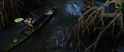 kayak_fish_post_2