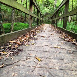 GetHiking!/GetBackpacking!  |  Fall Kickoff! @ Greensboro Shop | Greensboro | North Carolina | United States