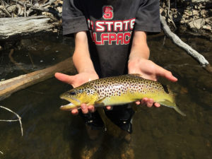 (SOLD OUT) Fly Fishing Class | Garner, NC @ Foster Lake & Pond Management | Garner | North Carolina | United States
