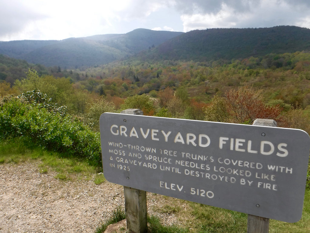 On its 300-mile run through the mountains, the MST passes through Graveyard Fields on the Blue Ridge Parkway.