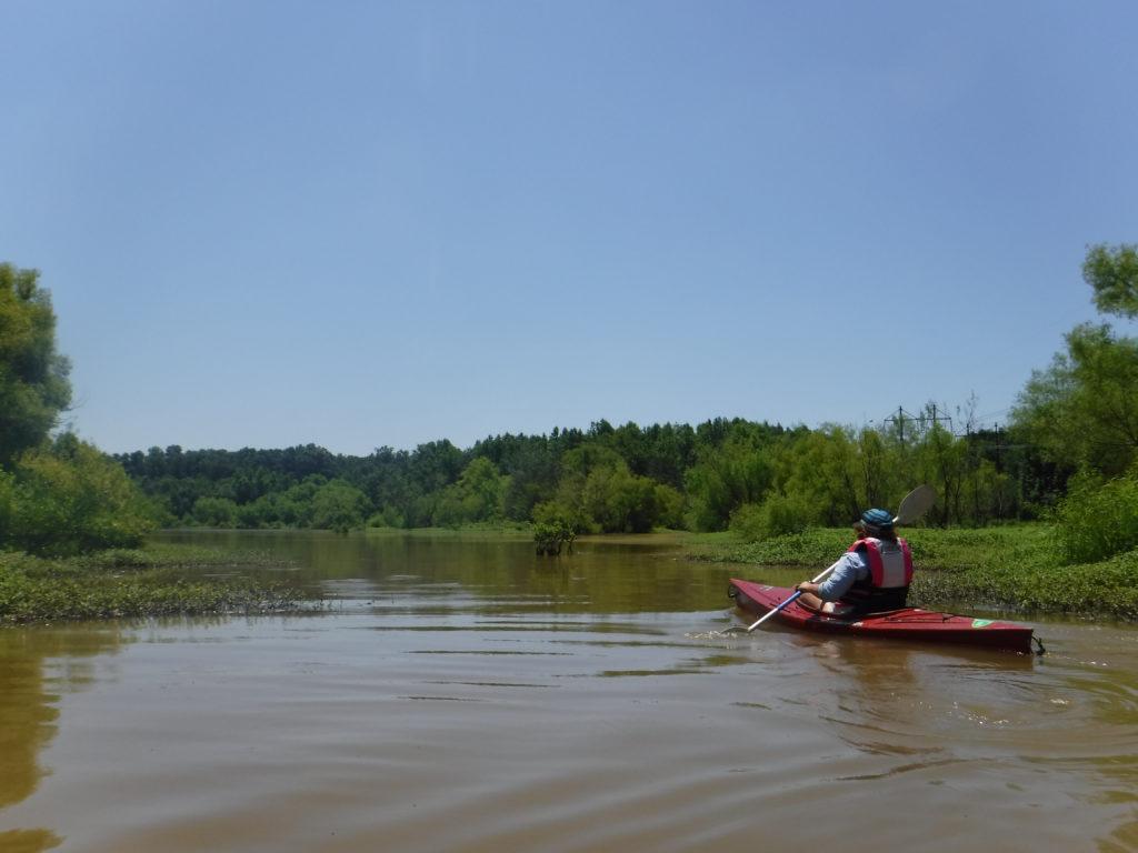 Paddling the marshlands of Falls Lake