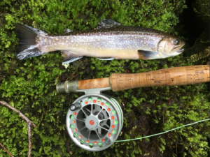 [SOLD OUT] Fly Fishing Class | Greensboro @ The Summit Center @ Haw River State Park