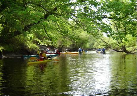 Contentnea Creek