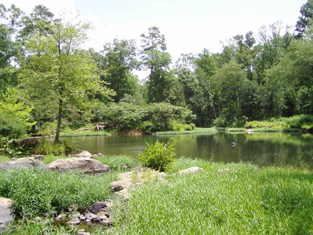 Sennett Hole, West Point on the Eno city park