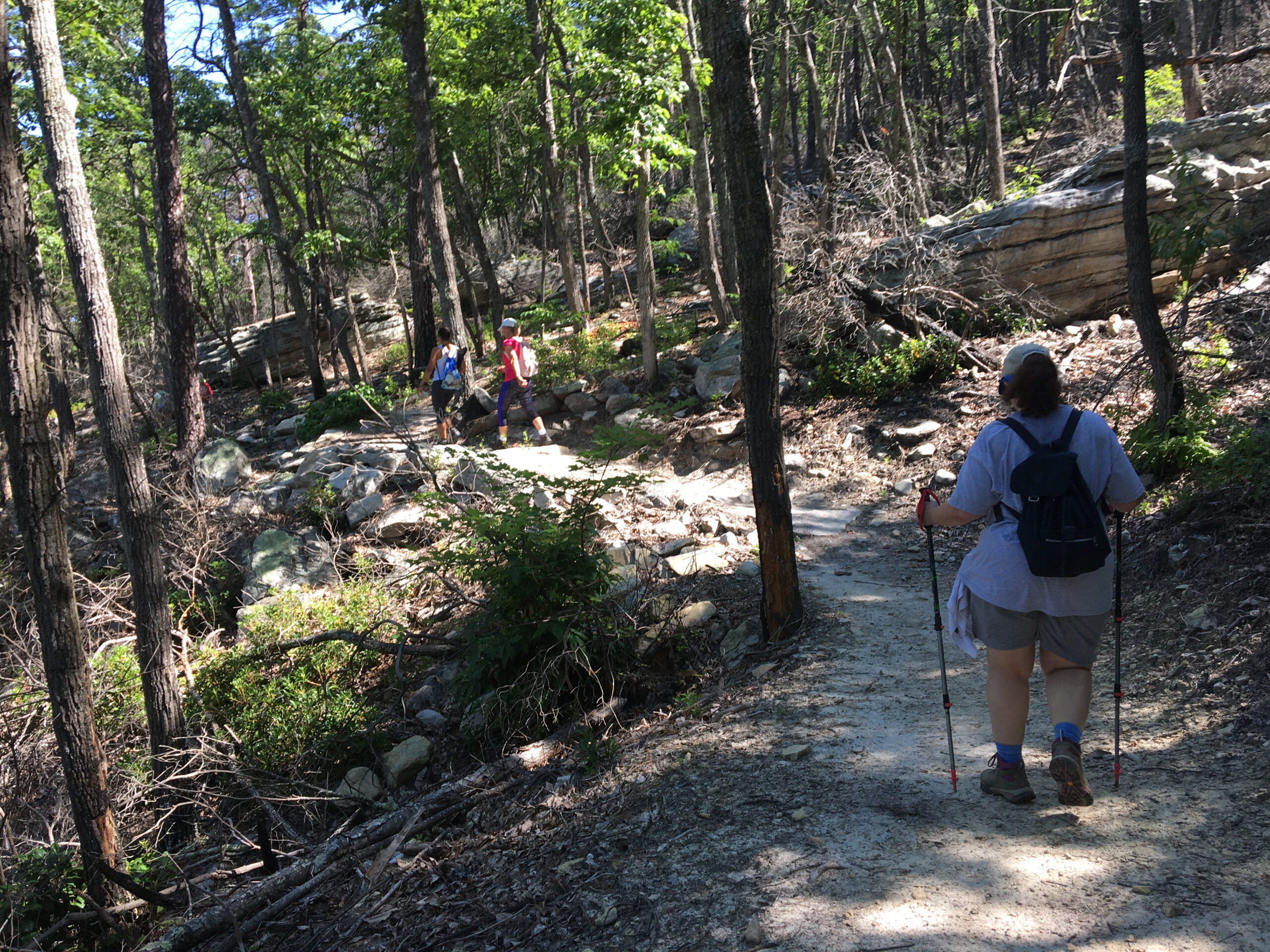 Mountain Trail, Pilot Mountain