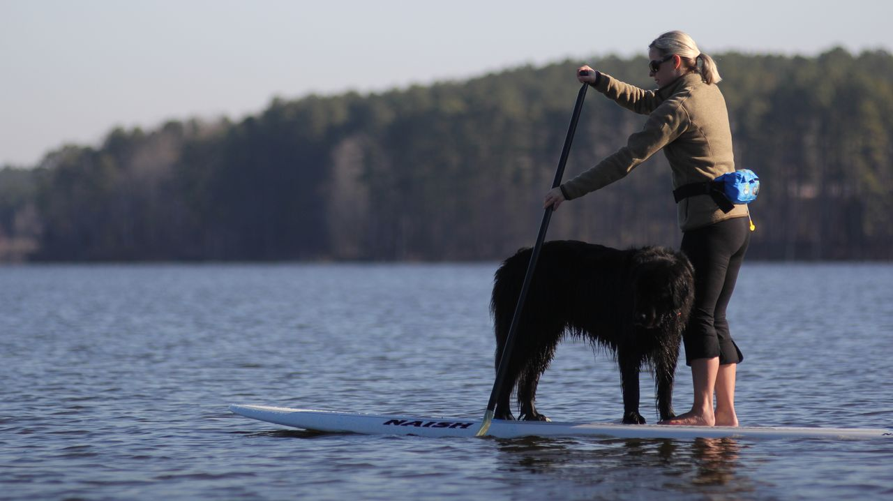 Molly paddling with the late Lady.