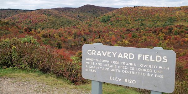 Graveyard Fields along the Mountains-to-Sea Trail (photo courtesy romanticasheville.com)